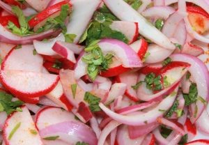 Red Onion and Radish topping